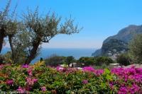 На острове Капри